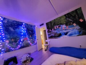 Bedroom with twinkle lights, nature murals and affirmations