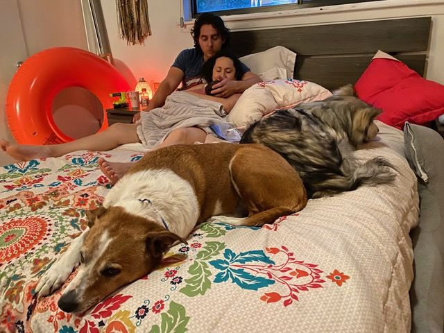 New family in bed after home birth