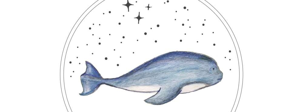 whalesongbirths